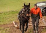 Olivier et Victorine la Mule