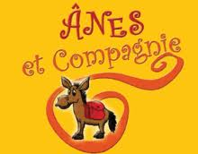 logo anes et co